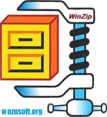 WinZip 25.0 Crack Key With Activation Code Free Torrent Download {New}